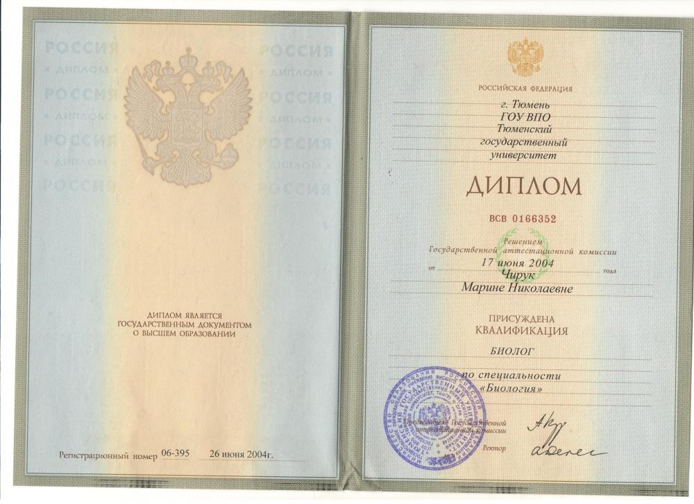 Материалы к аттестации Шайдуровой М Н Гимназия во имя Святителя  Диплом о высшем образовании 2004 год